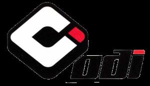 ODI-Logo